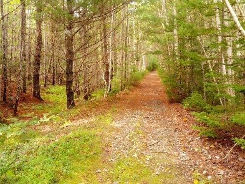 Walking Trail at Boulder Cove Cottages
